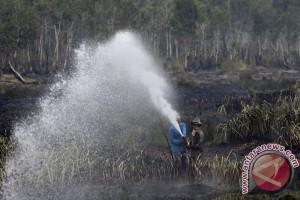 BRG utamakan retorasi lahan terbakar 2015