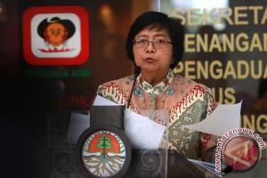 Berkas enam perusahaan pembakar hutan belum dilengkapi