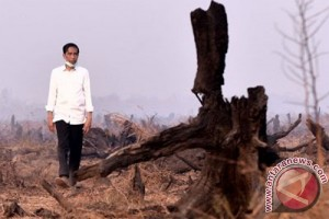 DPR RI sambut baik program perhutanan sosial seluas 12,7 juta hektar