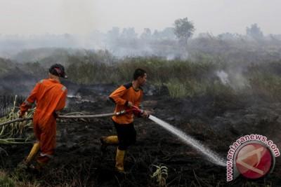 Kebakaran Lahan Ogan Ilir
