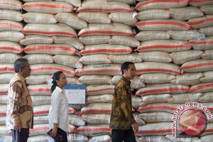 Pimpinan Bulog diduga terlibat pembobolan beras 864 ton senilai Rp7,1 miliar
