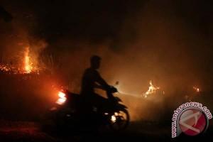 Ratusan KK mengungsi dampak kebakaran hutan di Polman