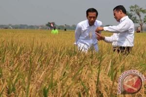 Hemat Rp56 triliun karena impor pangan ditekan
