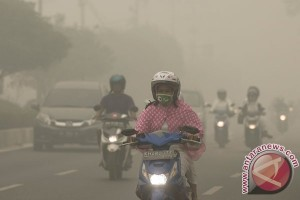 Riset: polusi bisa membunuh 75 persen sel sperma