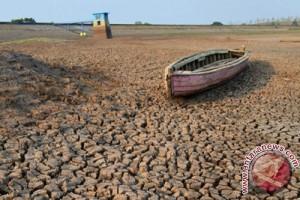 Perubahan iklim dapat timbulkan 500.000 kematian tambahan pada 2050