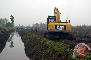 EARTH WIRE -- Indonesian govt imposes moratorium on land clearing of peatland
