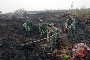 Riau segera miliki laboratorium gambut internasional