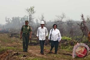 Presiden ingatkan pencegahan kebakaran hutan hars berkelanjutan