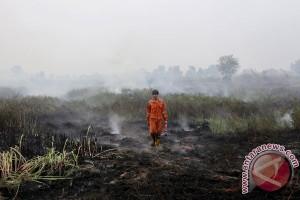 BENCANA ASAP - Sumatera Selatan paling luas terbakar