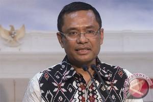 Indonesian govt keen to establish partnership with EU: Minister
