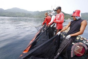 """KKP tegaskan """"trawl"""" tidak ramah lingkungan"""