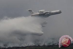 IUCN nilai Indonesia maksimal tangani kebakaran hutan
