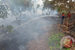 Kalbar fokuskan pencegahan kebakaran pada lahan gambut