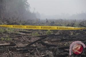 Pemerintah agar serius cegah kebakaran lahan