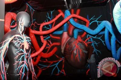 Mesir bongkar jaringan internasional perdagangan organ manusia