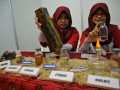 Bioetanol Dari Pelepah Sawit