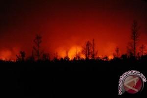 Kebakaran lahan di Spanyol, ratusan wisatawan dievakuasi