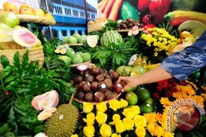 Festival Danau Kembar Buleleng promosikan potensi pertanian