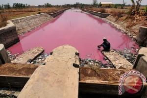 Air Sungai Berwarna Merah Muda