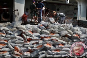 Rice imports to reinforce food resilience