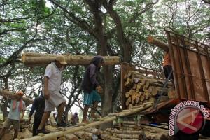 Indonesia raih sertifikasi kayu hutan legal Eropa