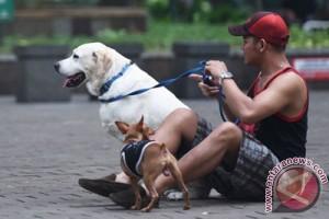 Pelihara hewan membuat daya tarik seksual meningkat