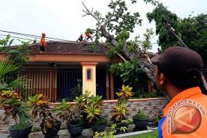 67 rumah di Makassar rusak diterjang angin kencang