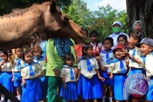 Gembira Loka Zoo mulai bangun zona karnivora