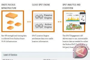 Sasar Asia Tenggara, Ruckus Wireless gandeng Ingram Micro