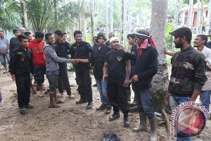 Kapolri berharap Aceh bersih dari Din Minimi