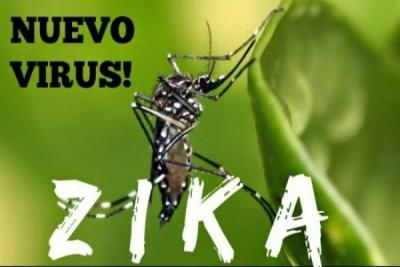 Florida tes lebih dari 200 orang terkait Zika