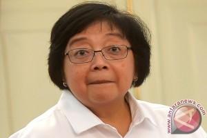 Kementerian LHK rehabilitasi lahan 5,5 juta hektare