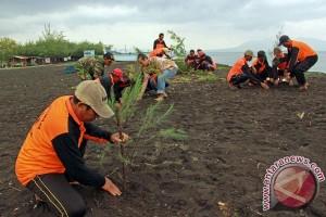 Masyarakat Medan harus budayakan tanam pohon