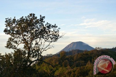 Pendaki hilang di Semeru ditemukan selamat