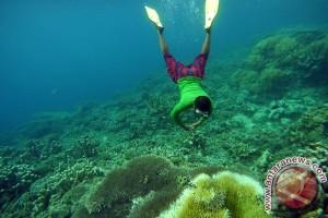 Putri Indonesia Gorontalo promosikan taman laut Olele