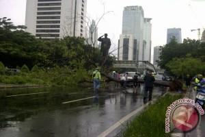 Hujan lebat, pohon tumbang timpa mobil di Jalan Sudirman