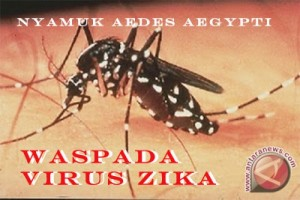 Wabah virus Zika tak akan batalkan Olimpiade Rio