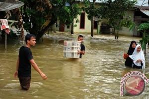 BENCANA BANJIR - Puluhan ribu jiwa terdampak banjir Kampar-Rohul