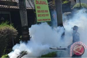 Angka bebas jentik Yogyakarta masih rendah