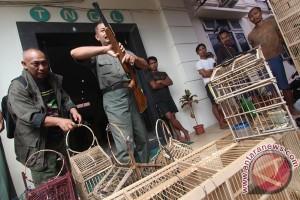 Polisi amankan ratusan burung asal Malaysia