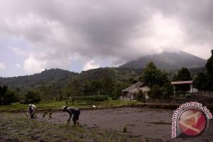 Empat gunung api di Sulut berstatus waspada