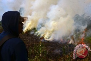Kisah pemadam kebakaran lahan