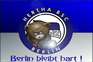 Hertha taklukkan Schalke untuk pelihara start sempurna
