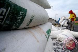 Pemerintah perlu benahi kebijakan impor garam