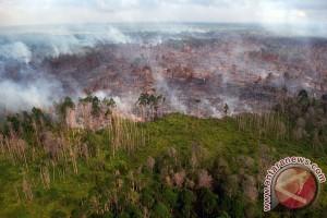 Kebakaran lahan gambut Meranti ancam pemukiman warga