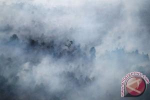 Satgas kewalahan padamkan kebakaran gambut Meranti
