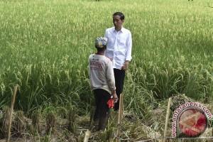 Para petani sambut baik HET beras