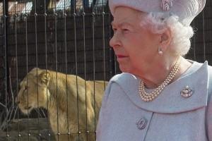 Ratu Elizabeth lewatkan misa Natal akibat flu berat