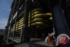 90 petugas bersihkan ribuan ubur-ubur di PLTU Paiton