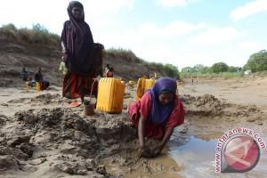 Setiap hari 3.000 warga Somalia mengungsi akibat paceklik